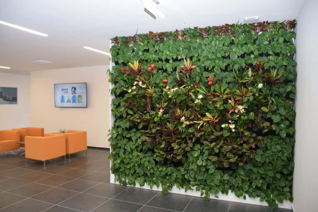 Zelená stěna